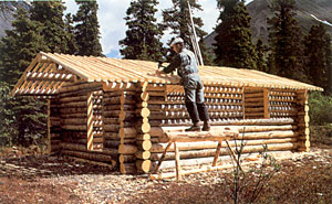 Richard Proenneke Building His Roof