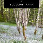 Web Book Cover 1